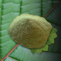 The Deep End, Deeply Relaxing Kratom Leaf