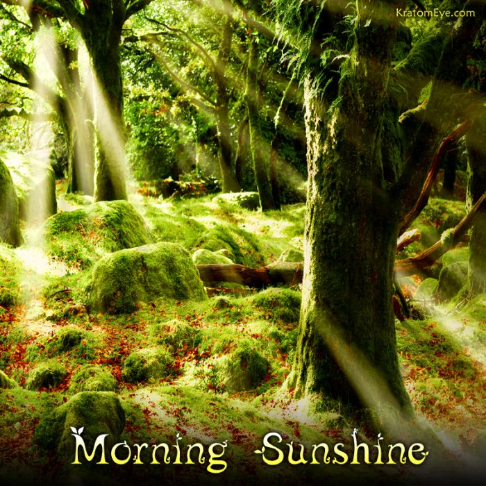 Morning Sunshine Relaxing & Stimulating Kratom Aromas