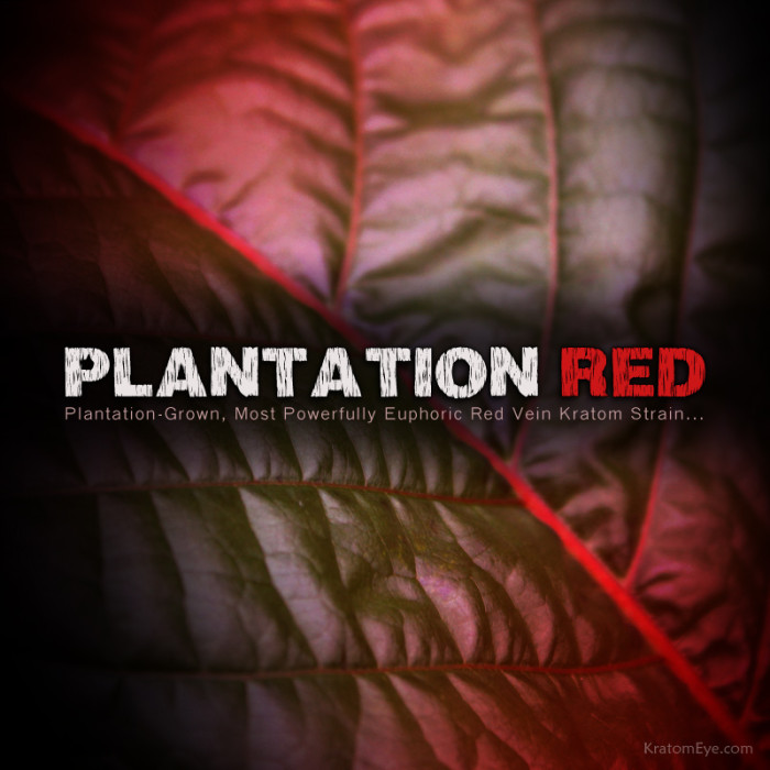 Plantation Red Vein Kratom Powder