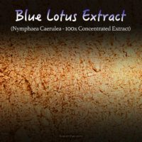 Egyptian Blue Lotus Extract (100x Super Concentrated) - Nymphaea Caerulea - Kratom Substitutes