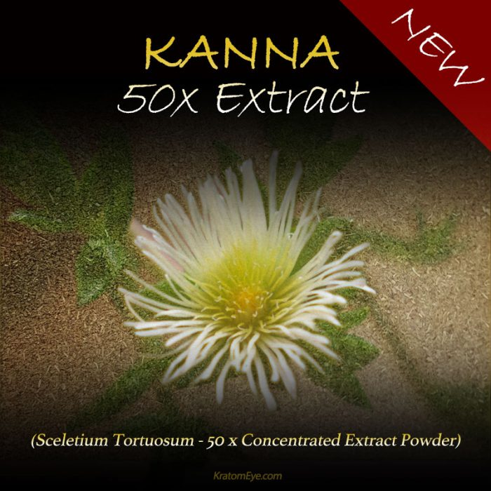 Kanna 50x Extract - Highly Concentrated - Sceletium Tortuosum - Highest Grade Natural Extraction Powder