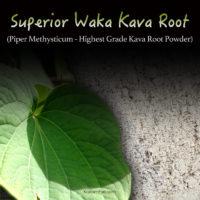 Superior Waka Kava Root Powder From Vanuatu - Highest Quality Piper Methysticum - Kratom Substitutes