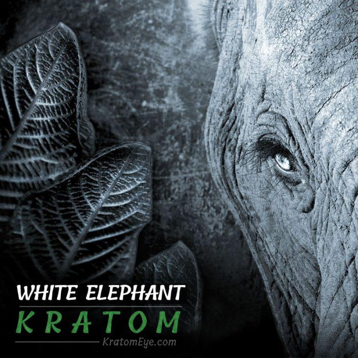 White Elephant Kratom