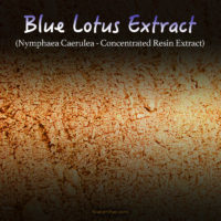 Egyptian Blue Lotus Extract (Super Concentrated) - Nymphaea Caerulea - Kratom Substitutes