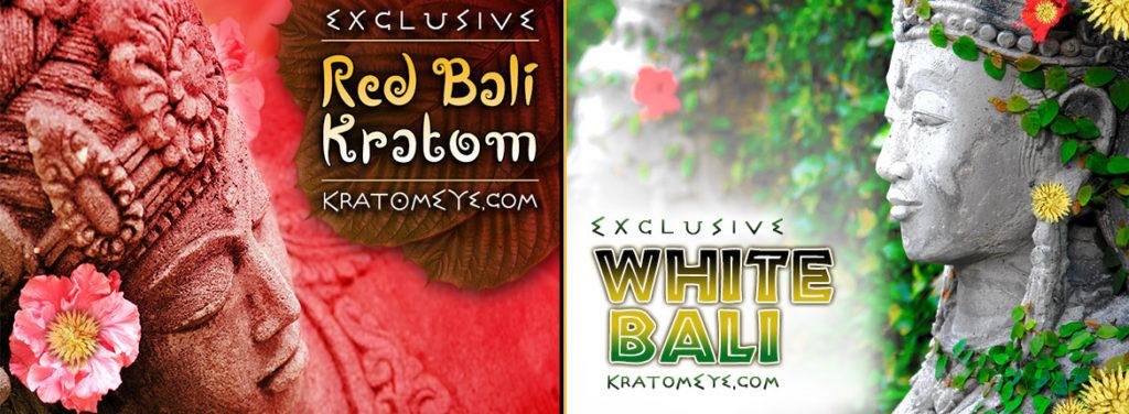 Exclusive RED VEIN BALI & WHITE VEIN BALI Strains