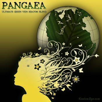 PANGAEA-Ultimate-Green Vein Kratom Blend