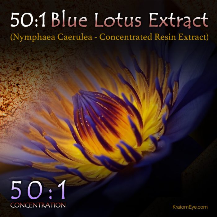 50:1 Blue Lotus Extract (Super Concentrated) - Nymphaea Caerulea - Kratom Alternatives