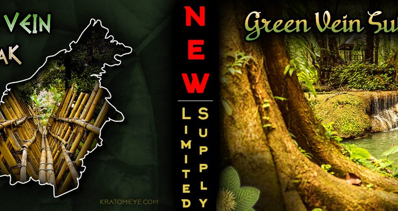 NEW Kratom Strains: Green Vein Dayak & Green Vein Sulawesi