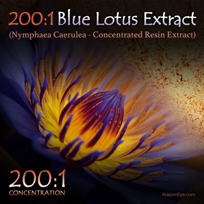 200:1 Blue Lotus Extract