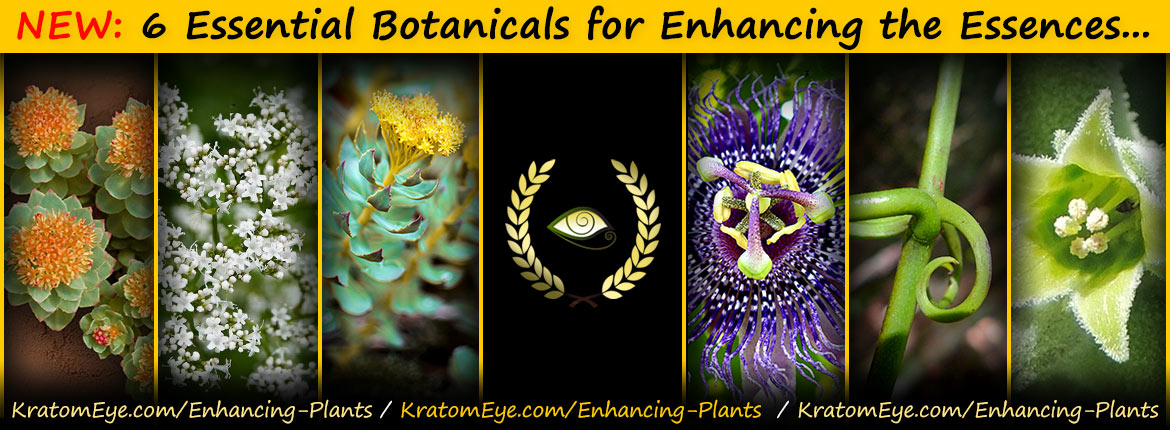 Ashwagandha, Rhodiola, Chinese Cat's Claw, Passion Flower, Valerian Root...