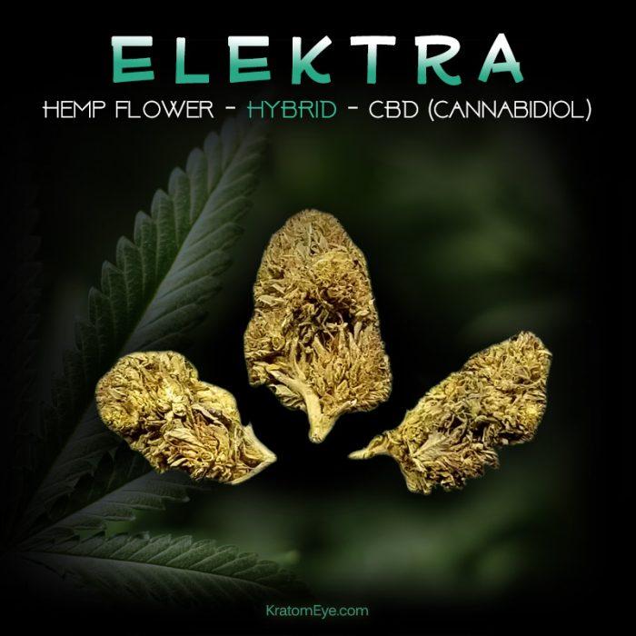 ELEKTRA CBD Sativa-Dominant Hybrid Hemp Flower