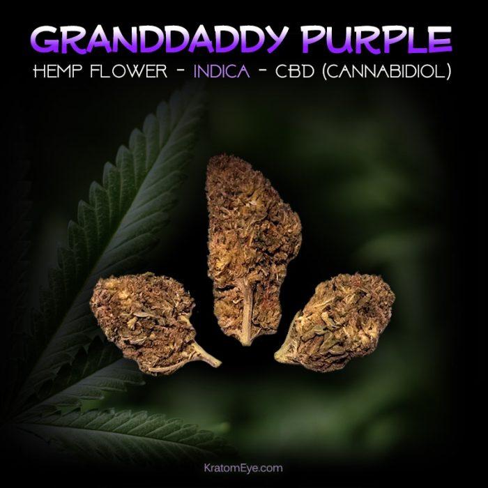 GRANDDADDY PURPLE CBD Indica Hemp Flower
