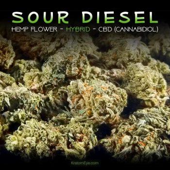 SOUR DIESEL CBD Sativa Dominant Hybrid Hemp Flower